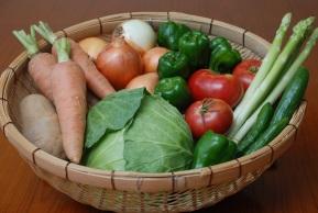 糸島野菜写真